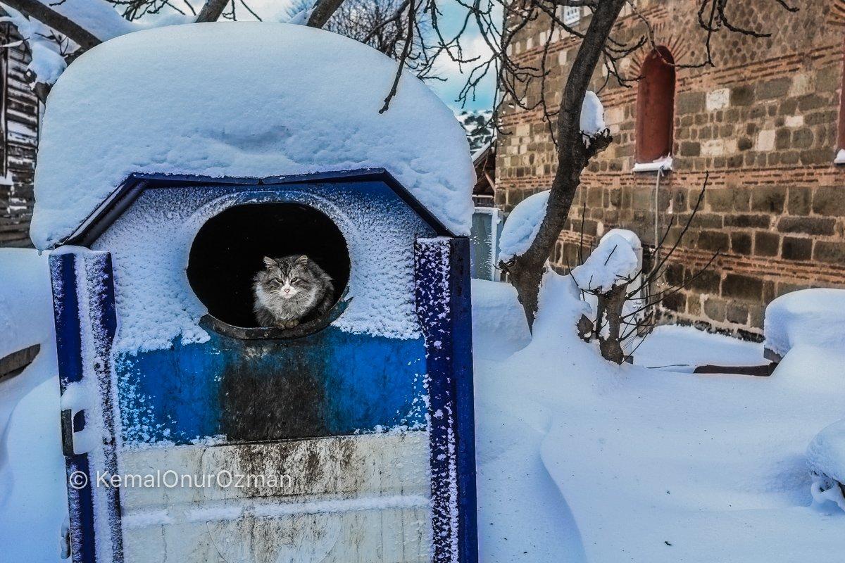 amasra-kar-fotograflari-kemal-onur-ozman-40