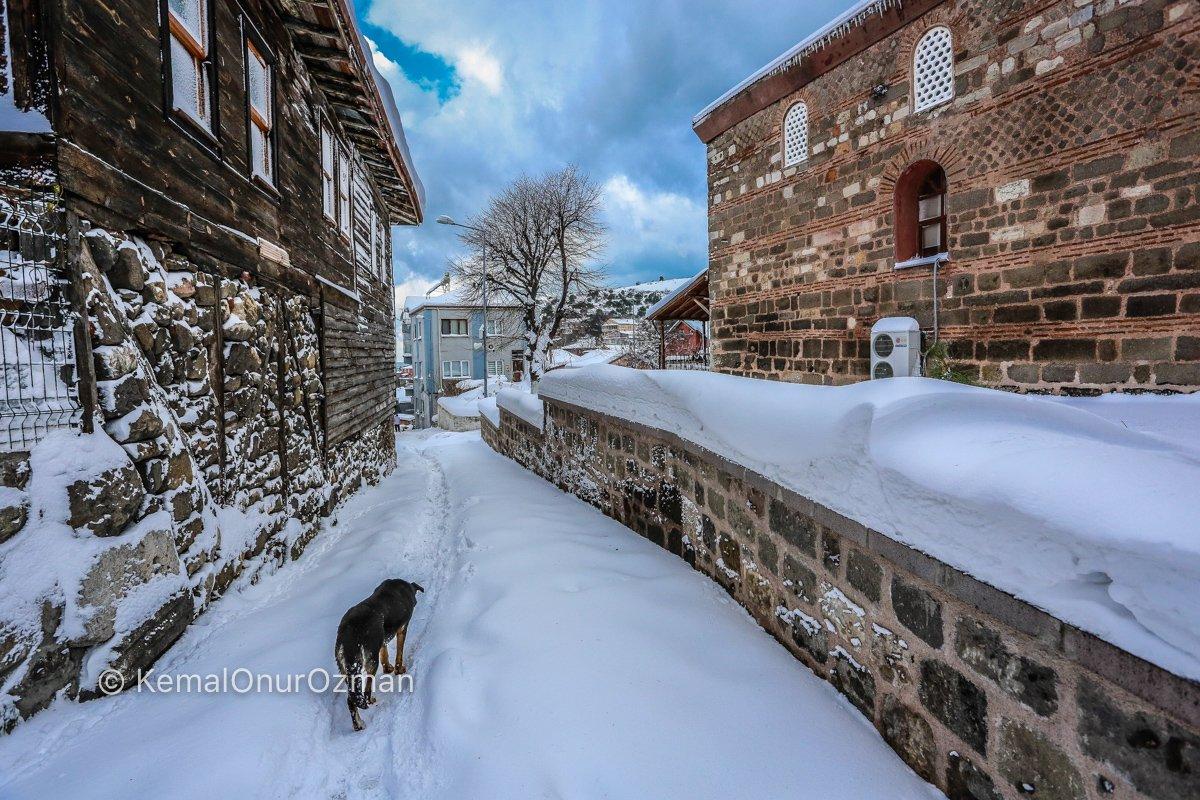 amasra-kar-fotograflari-kemal-onur-ozman-45