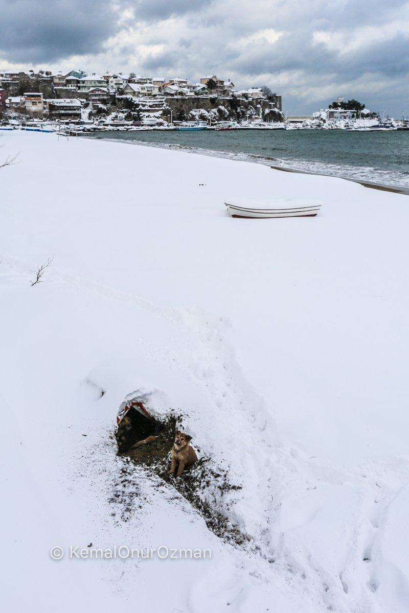 amasra-kar-fotograflari-kemal-onur-ozman-9